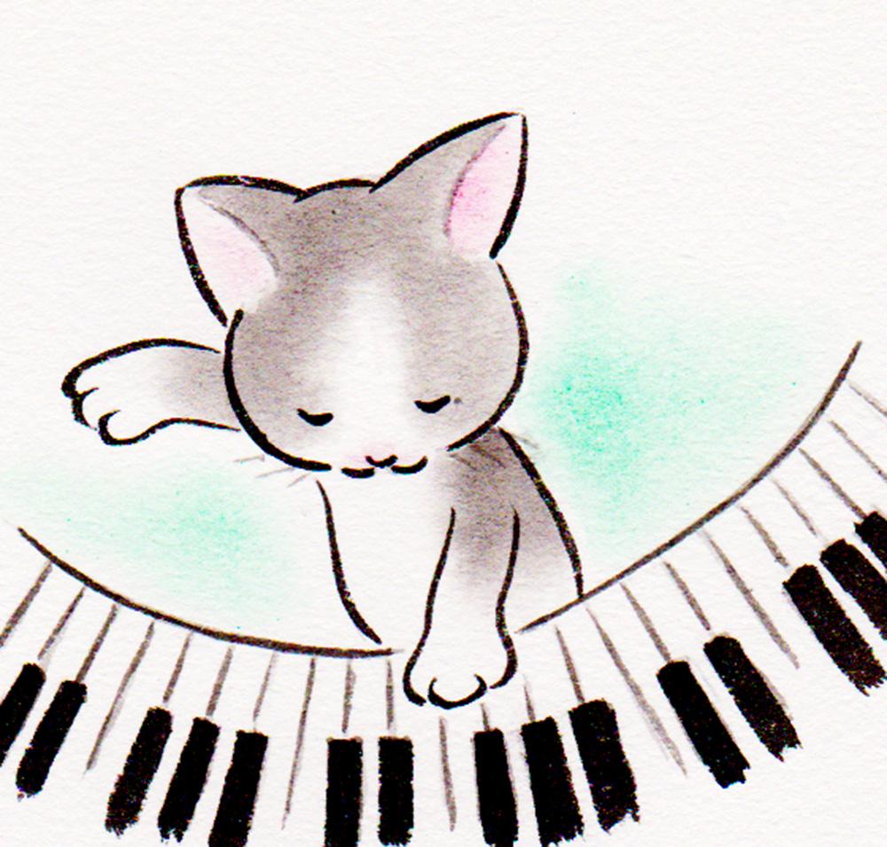 ぬこ、ピアノを弾く